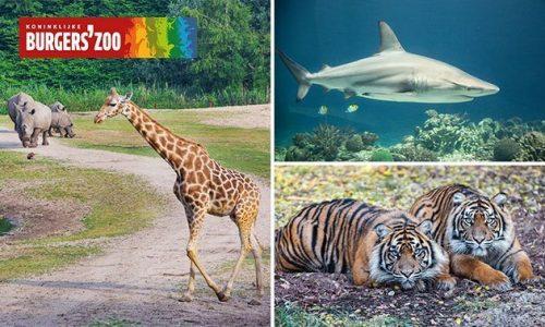 Naar Burger's Zoo voor maar €15,90 bij SocialDeal