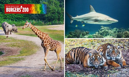 Tickets Burgers' Zoo voor de laagste prijs. Koop voor €17,50