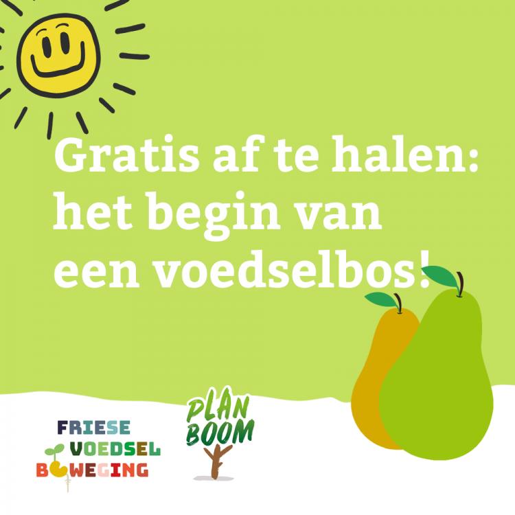 Gratis Laagstam appel- en perenbomen ophalen (Friesland)